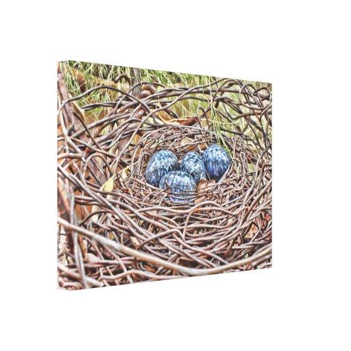 Huevos azules en lona envuelta jerarquía impresiones en lienzo estiradas