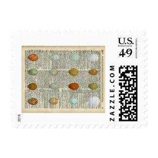 Huevos británicos de los pájaros timbres postales