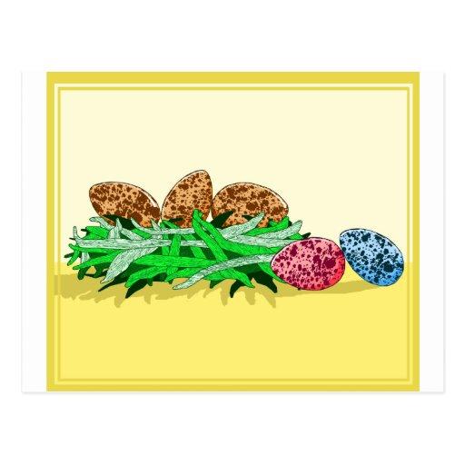 Huevos coloridos del pájaro tarjeta postal