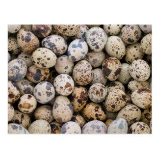 Huevos de codornices, Huaraz, Blanca de Postales