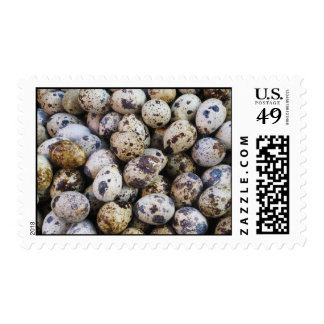 Huevos de codornices sello