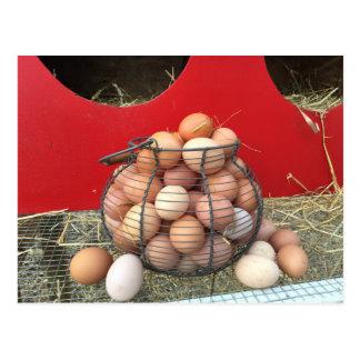 Huevos de la granja con nidal postal