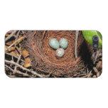 Huevos de los pájaros iPhone 5 funda