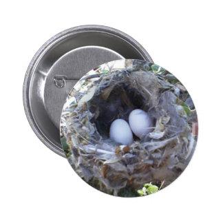 Huevos del colibrí del botón pin redondo de 2 pulgadas