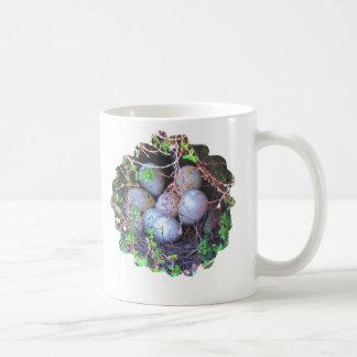 Huevos del pájaro en foto digital de la naturaleza taza de café