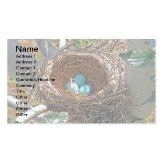 Huevos del petirrojo en una jerarquía del árbol de