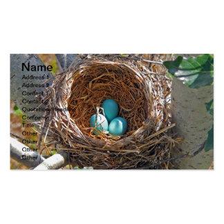 Huevos del petirrojo en una jerarquía del árbol tarjetas de visita