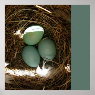 Huevos en la jerarquía - su texto póster