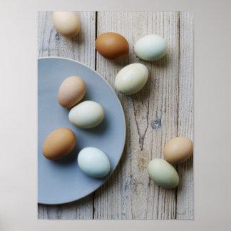 Huevos enteros póster