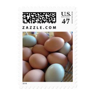 Huevos frescos de la granja timbre postal