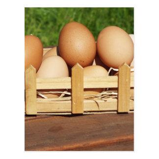 huevos naturales del pollo por el país postal