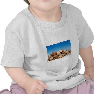 Huevos Camisetas