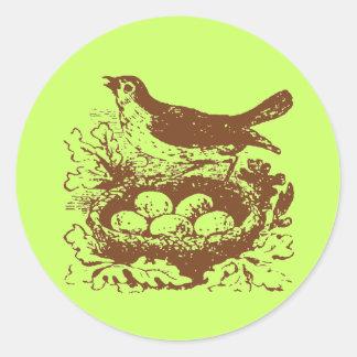 Huevos y jerarquía del pájaro del vintage pegatina redonda