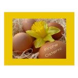 Huevos y saludo de pascua del narciso - alemán postal