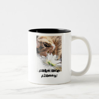 Hug a cat Two-Tone coffee mug