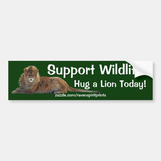 HUG A LION Wildlife Support Bumper Sticker