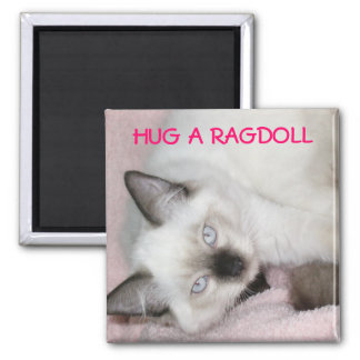 HUG A RAGDOLL MAGNET