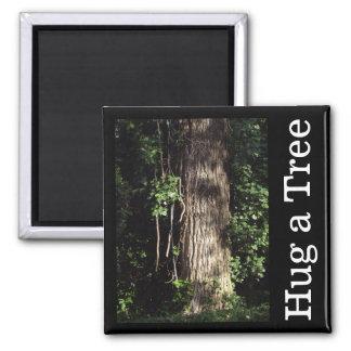 Hug a Tree Magnet