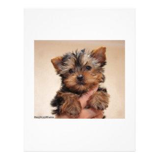 Hug Me Puppy Letterhead