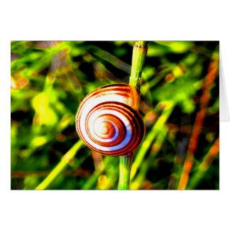 Hug the beauty and love Gastropoda Card