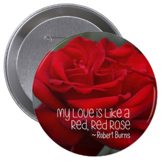 Huge, 4 Inch Round Button My Love Red Rose