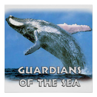 HUGE 52 x 52 inch Poster Save the Whales
