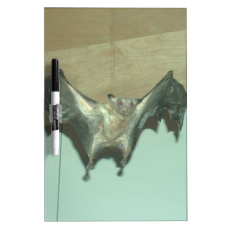 "Huge Bat ""flying fox"" Dry-Erase Board"
