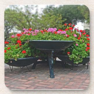Huge Bowls of Flowers in the Park Beverage Coasters