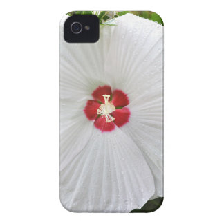 Huge Flower iPhone 4 Cover