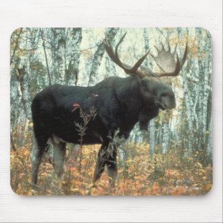 Huge Moose Mouse Pad