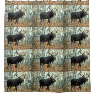 Huge Moose Shower Curtain