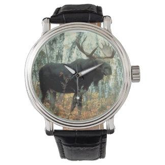 Huge Moose Watches