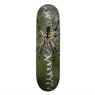 Huge Spider / Yellow & Black Argiope Skateboard Deck