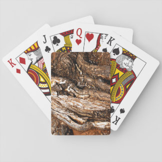 Huge tree roots playing cards