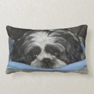 Huggable Shih Tzu Puppy Pillow