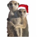 "Hugging meerkats Ornament<br><div class=""desc"">A photo sculpture ornament - for a meery Christmas!