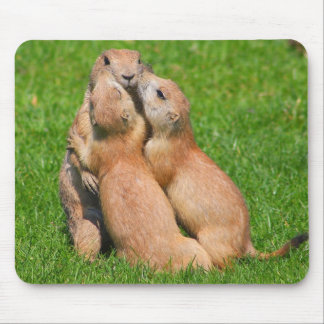 Hugging time mouse pad