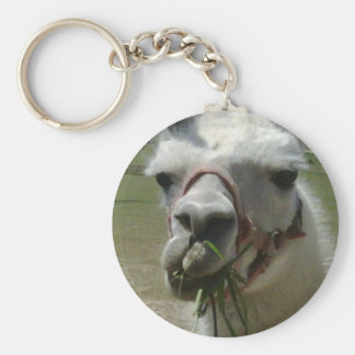 Huh, you talking to me? Llama Key chain