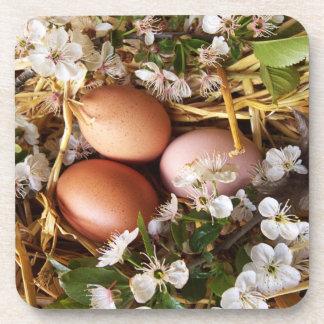 Hühnereier im Nest Beverage Coaster