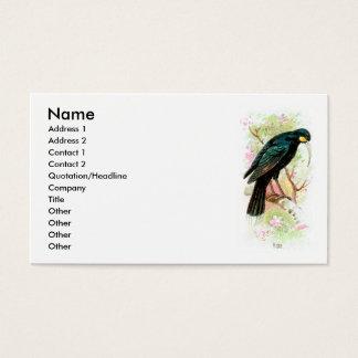 Huia Business Card
