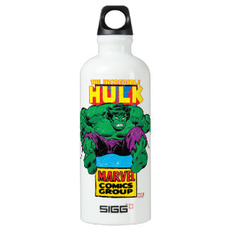 Hulk Retro Comic Character Water Bottle