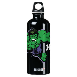 Hulk Retro Dive Aluminum Water Bottle