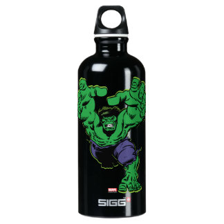 Hulk Retro Grab Aluminum Water Bottle