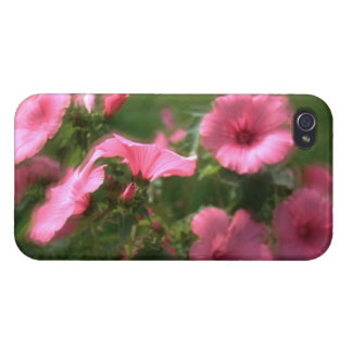 HULL IPHONE4 LAVATERES iPhone 4 CASES