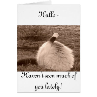 Hullo - haven't seen you for a while! card