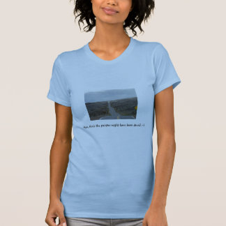 Hum, think the painter might have been drunk! T-Shirt