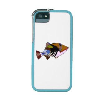 Huma Huma Triggerfish iPhone 5 Cases
