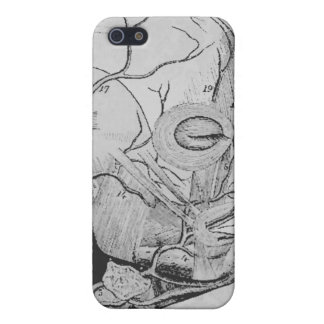 Human002 Cover For iPhone 5/5S