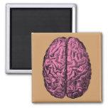 Human Anatomy Brain 2 Inch Square Magnet