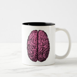 Human Anatomy Brain Mug